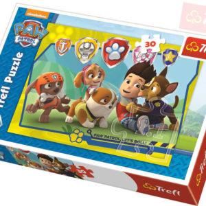 TREFL Puzzle Ryder a přátelé Paw Patrol 27x20cm 30 dílků skládačka v krabici