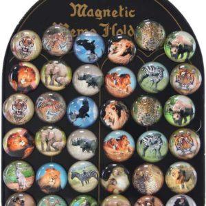 Magnetky dětské kulaté zvířátka afrika samostatné 3,5cm různé druhy