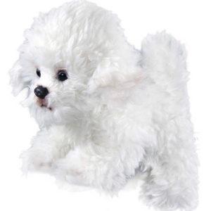 PLYŠ Pes bišon sedící 26 cm pejsek *PLYŠOVÉ HRAČKY*