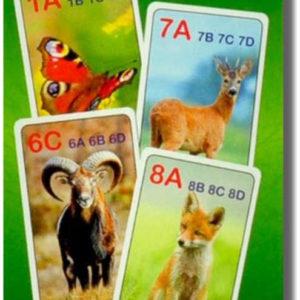 HRA Karetní Kvarteto obrázkové LES 32 karet *SPOLEČENSKÉ HRY*