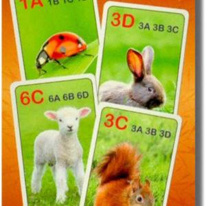 HRA Karetní Kvarteto obrázkové MLÁĎATA 32 karet *SPOLEČENSKÉ HRY*